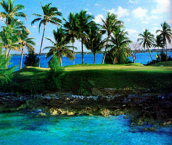 Community Service Organizations In The Virgin Islands